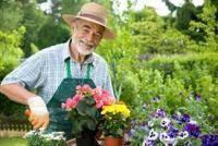 """Результат пошуку зображень за запитом """"садівник"""""""