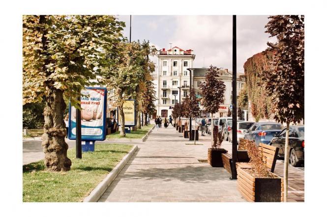 На изображении может находиться: дерево, растение и на улице