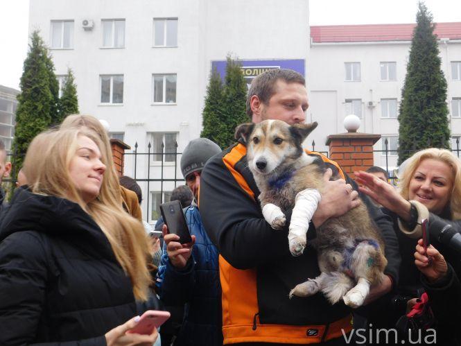 Поліція затримала жителя Хмельниччини, який прив'язав до автомобіля собаку і тягнув її по дорозі - Цензор.НЕТ 5939