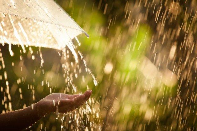 Дощ  - фото 406843