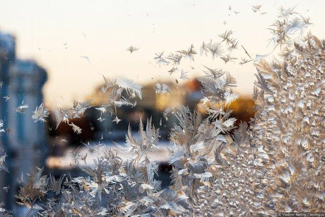Морозний день   - фото 365059
