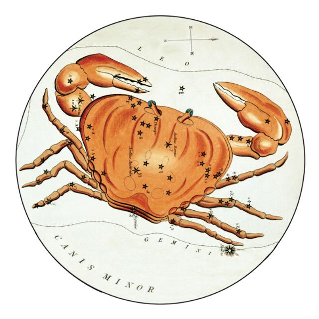 Гороскоп на 23 січня 2021: прогноз для всіх знаків Зодіаку - фото 442358