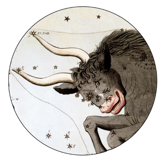 Гороскоп на 23 січня 2021: прогноз для всіх знаків Зодіаку - фото 442365