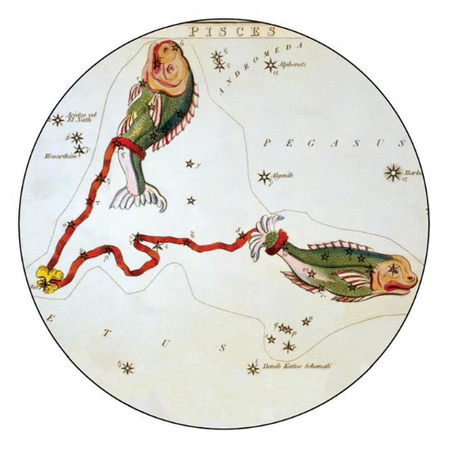 Гороскоп на 23 січня 2021: прогноз для всіх знаків Зодіаку - фото 442359
