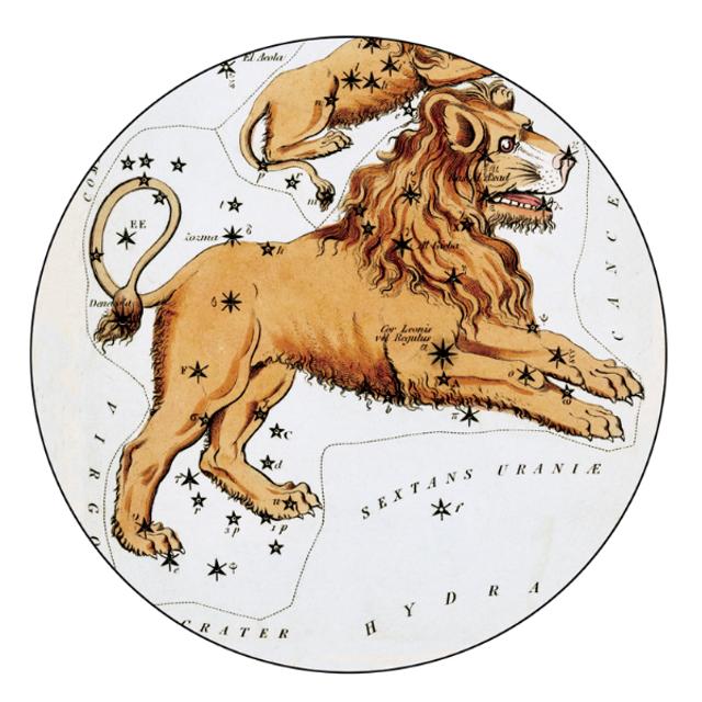 Гороскоп на 23 січня 2021: прогноз для всіх знаків Зодіаку - фото 442363