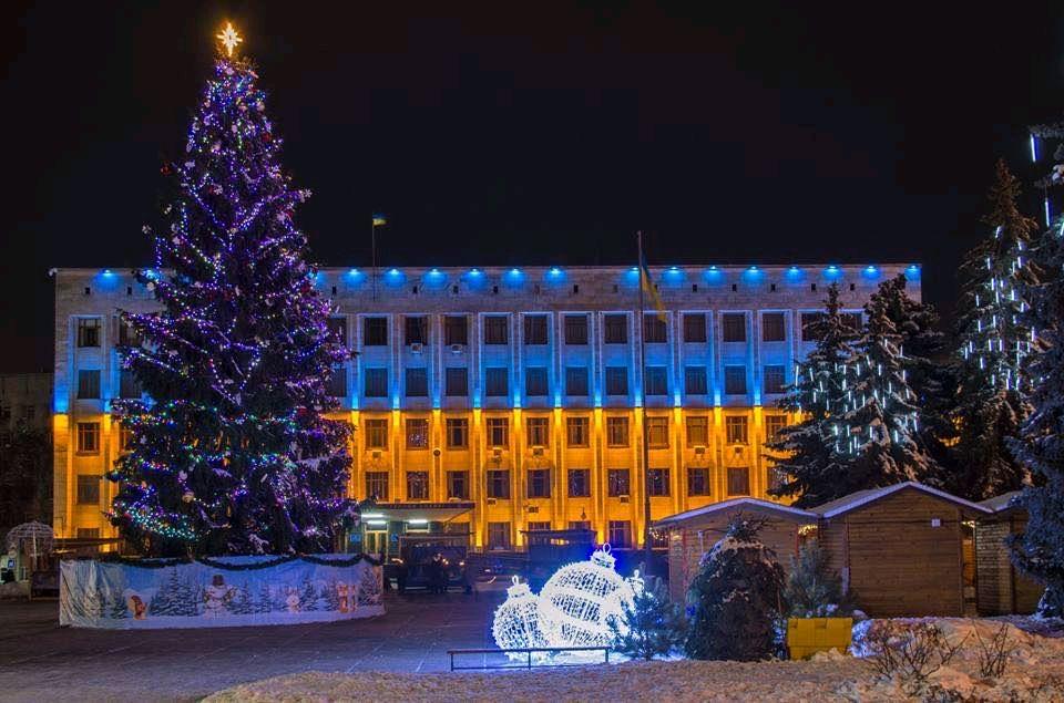 Житомир визначився з головним новорічним деревом