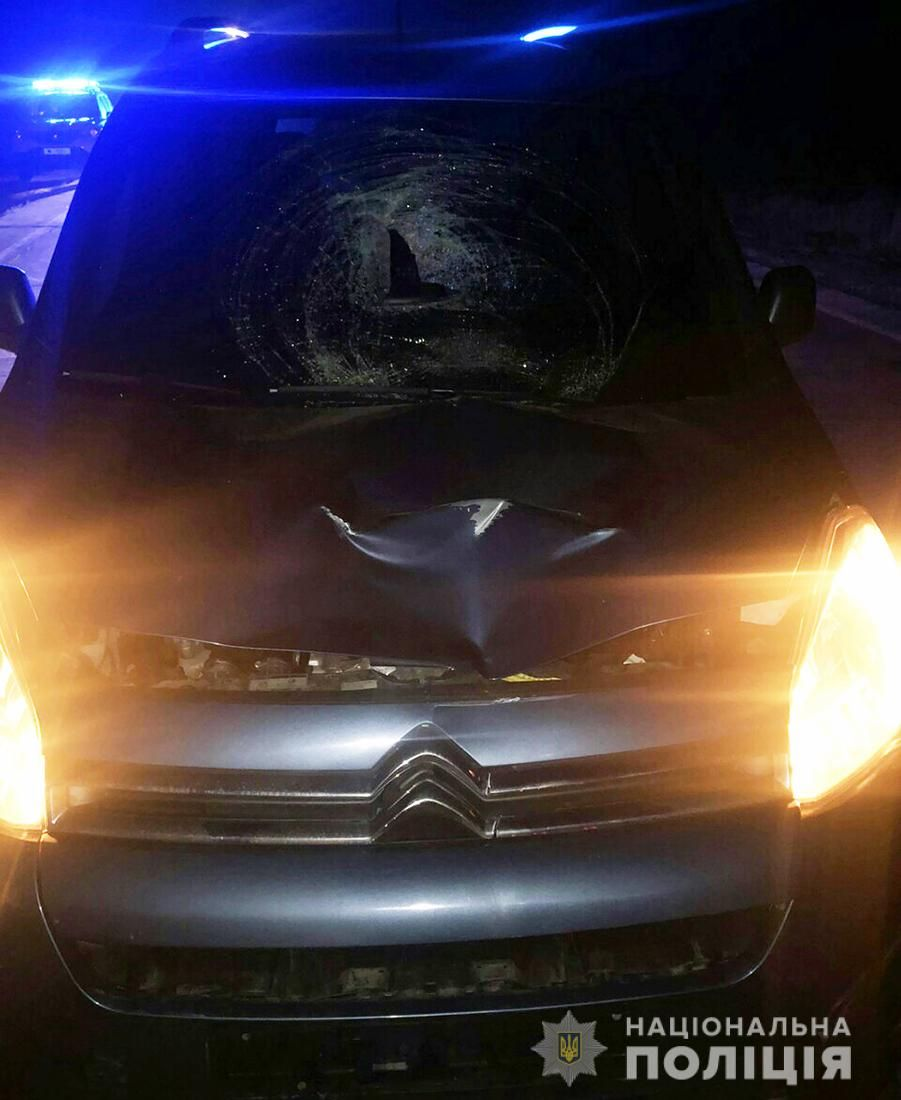 Поліція встановлює особу загиблого у ДТП у Житомирському районі пішохода