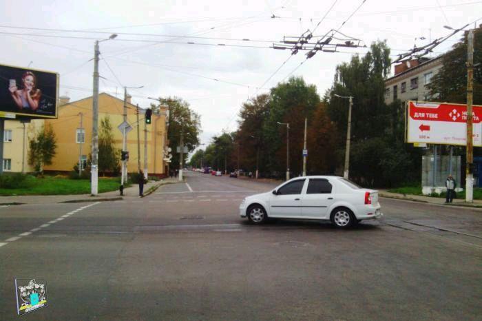 Житомирський виконком дозволив зрізати дерева, що заважають реконструкції тротуарів